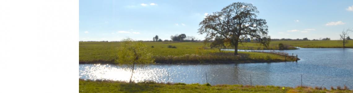 Missouri – MU Drainage & Subirrigation Plots (MUDS 1)