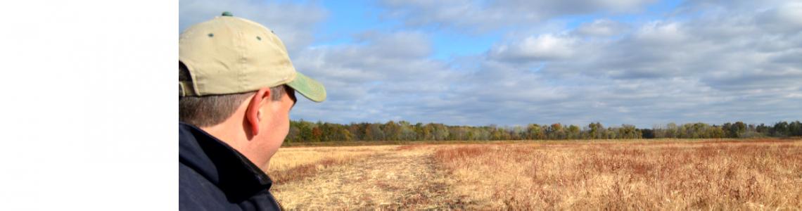 Missouri – MU Drainage & Subirrigation Plots (MUDS 4)
