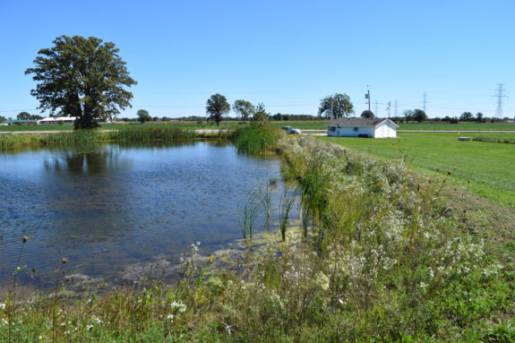Drainage Water Recycling – Transforming Drainage